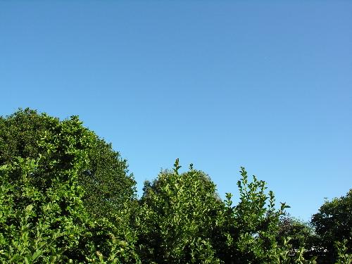Blue_sky1