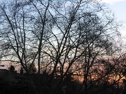 Evening_sky