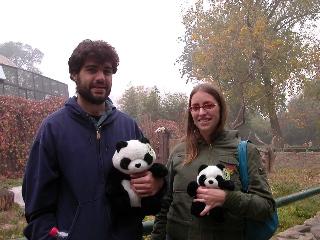 Pandatourist1